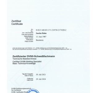 Zertifikat DVS Sascha Hahn